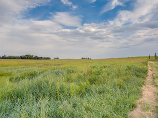 Photo 6: 17ac NORTH of DUNBOW Rd 48 Street: Rural Foothills County Land for sale : MLS®# A1025960