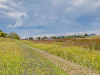 Photo 18: 17ac NORTH of DUNBOW Rd 48 Street: Rural Foothills County Land for sale : MLS®# A1025960