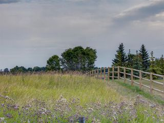 Photo 30: 17ac NORTH of DUNBOW Rd 48 Street: Rural Foothills County Land for sale : MLS®# A1025960