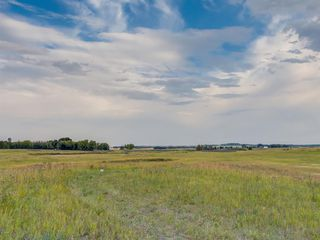 Photo 19: 17ac NORTH of DUNBOW Rd 48 Street: Rural Foothills County Land for sale : MLS®# A1025960