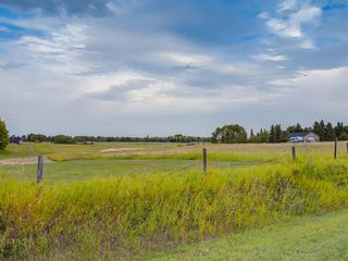 Photo 35: 17ac NORTH of DUNBOW Rd 48 Street: Rural Foothills County Land for sale : MLS®# A1025960