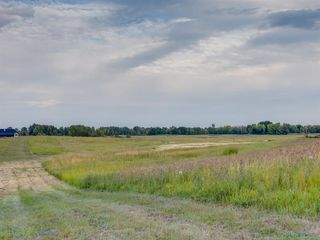 Photo 27: 17ac NORTH of DUNBOW Rd 48 Street: Rural Foothills County Land for sale : MLS®# A1025960
