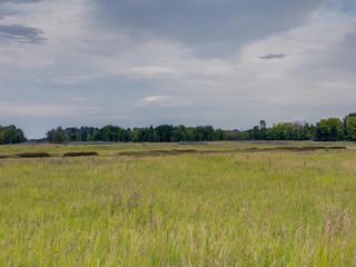 Photo 10: 17ac NORTH of DUNBOW Rd 48 Street: Rural Foothills County Land for sale : MLS®# A1025960