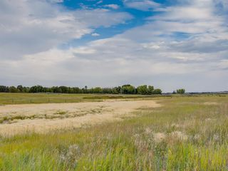 Photo 13: 17ac NORTH of DUNBOW Rd 48 Street: Rural Foothills County Land for sale : MLS®# A1025960