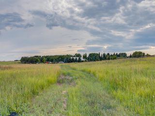 Photo 17: 17ac NORTH of DUNBOW Rd 48 Street: Rural Foothills County Land for sale : MLS®# A1025960