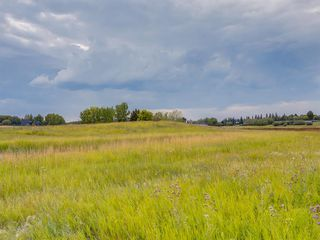 Photo 15: 17ac NORTH of DUNBOW Rd 48 Street: Rural Foothills County Land for sale : MLS®# A1025960