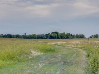 Photo 26: 17ac NORTH of DUNBOW Rd 48 Street: Rural Foothills County Land for sale : MLS®# A1025960