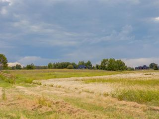 Photo 5: 17ac NORTH of DUNBOW Rd 48 Street: Rural Foothills County Land for sale : MLS®# A1025960