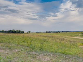 Photo 23: 17ac NORTH of DUNBOW Rd 48 Street: Rural Foothills County Land for sale : MLS®# A1025960