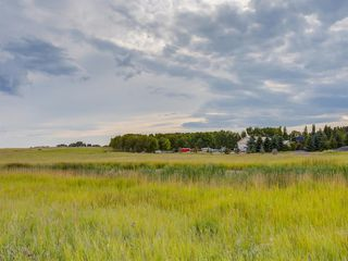 Photo 14: 17ac NORTH of DUNBOW Rd 48 Street: Rural Foothills County Land for sale : MLS®# A1025960