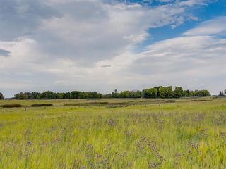 Photo 11: 17ac NORTH of DUNBOW Rd 48 Street: Rural Foothills County Land for sale : MLS®# A1025960