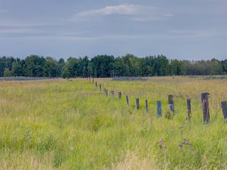 Photo 8: 17ac NORTH of DUNBOW Rd 48 Street: Rural Foothills County Land for sale : MLS®# A1025960