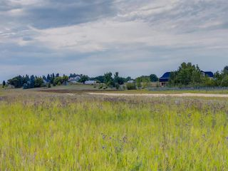 Photo 12: 17ac NORTH of DUNBOW Rd 48 Street: Rural Foothills County Land for sale : MLS®# A1025960