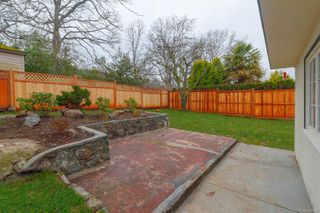 Photo 56: 3260 Bellevue Rd in : SE Maplewood House for sale (Saanich East)  : MLS®# 862497