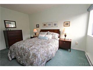 Photo 13: 307 2900 Orillia St in VICTORIA: SW Gorge Condo for sale (Saanich West)  : MLS®# 623055