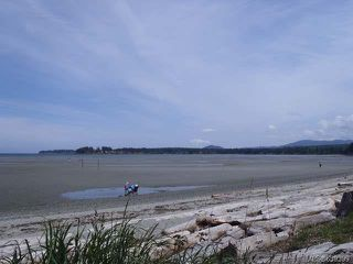 Photo 9: 61 1059 Tanglewood Pl in PARKSVILLE: PQ Parksville Row/Townhouse for sale (Parksville/Qualicum)  : MLS®# 639399