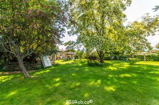 Photo 4: 3231 Northeast 16 Avenue in Salmon Arm: NE Salmon Arm House for sale : MLS®# 10113114