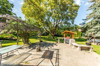 Photo 16: 3231 Northeast 16 Avenue in Salmon Arm: NE Salmon Arm House for sale : MLS®# 10113114