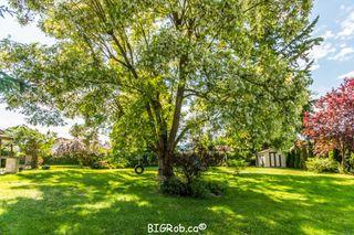 Photo 3: 3231 Northeast 16 Avenue in Salmon Arm: NE Salmon Arm House for sale : MLS®# 10113114