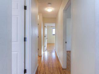 Photo 12: 10415 39A AV NW in Edmonton: House for sale : MLS®# E4141848