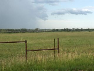 Photo 1: Range Road 81: Rural Brazeau County Rural Land/Vacant Lot for sale : MLS®# E4168466