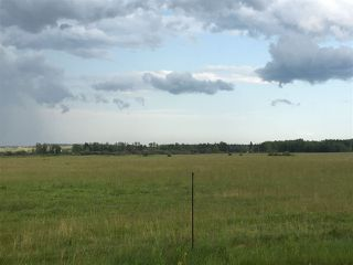 Photo 4: Range Road 81: Rural Brazeau County Rural Land/Vacant Lot for sale : MLS®# E4168466