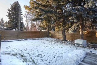 Photo 29: 13804 91 Avenue in Edmonton: Zone 10 House for sale : MLS®# E4177398