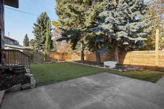 Photo 46: 13804 91 Avenue in Edmonton: Zone 10 House for sale : MLS®# E4177398