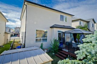 Photo 37: 117 Evansmeade Circle NW in Calgary: Evanston Detached for sale : MLS®# A1042078