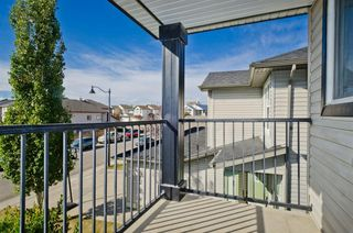 Photo 28: 117 Evansmeade Circle NW in Calgary: Evanston Detached for sale : MLS®# A1042078