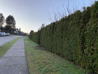 Photo 11: 2439 EDDINGTON Drive in Vancouver: Quilchena House for sale (Vancouver West)  : MLS®# R2527640