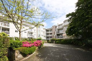 Photo 7: 416A 2678 DIXON Street in Springdale: Central Pt Coquitlam Home for sale ()  : MLS®# V830986