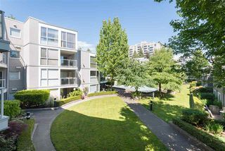 Photo 4: : Condo for sale (Vancouver East)  : MLS®# R2067640