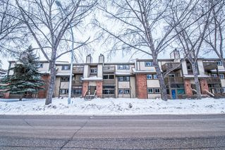 Photo 1: 203 491 Mandalay Drive in Winnipeg: Maples Condominium for sale (4H)  : MLS®# 1701517