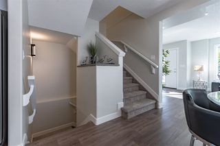 Photo 13:  in Edmonton: Zone 21 Townhouse for sale : MLS®# E4187286