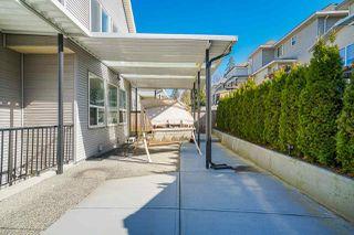 "Photo 28: 14674 62A Avenue in Surrey: Sullivan Station House for sale in ""SULLIVAN"" : MLS®# R2486956"