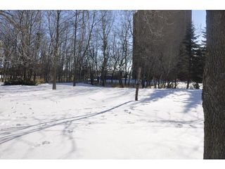 Photo 20: 35 Bramble Drive in WINNIPEG: Charleswood Residential for sale (South Winnipeg)  : MLS®# 1204287