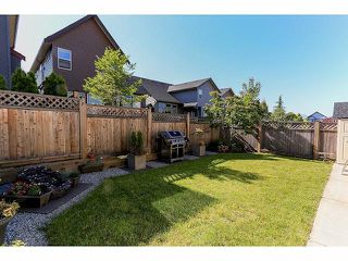 Photo 20: 7909 211B Street in Langley: Willoughby Heights House for sale : MLS®# F1416510