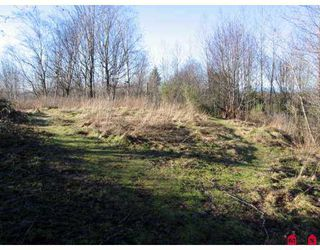 Photo 4: # 2.2AC SUMAS WY in Abbotsford: Central Abbotsford Land for sale : MLS®# F2618662