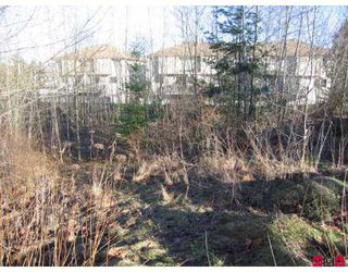 Photo 2: # 2.2AC SUMAS WY in Abbotsford: Central Abbotsford Land for sale : MLS®# F2618662