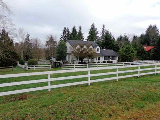 Photo 16: 20475 1ST AVENUE in Langley: Campbell Valley House for sale : MLS®# R2036160