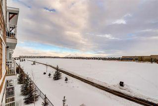 Photo 20: #7312 302 SKYVIEW RANCH DR NE in Calgary: Skyview Ranch Condo for sale : MLS®# C4186747