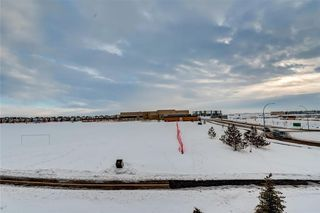 Photo 19: #7312 302 SKYVIEW RANCH DR NE in Calgary: Skyview Ranch Condo for sale : MLS®# C4186747