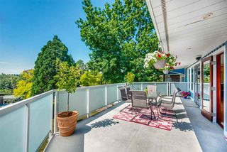 Photo 6: 812 Jackson Crescent in New Westminster: The Heights NW House for sale : MLS®# R2289493