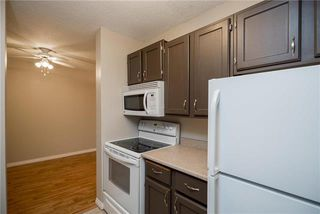 Photo 11: 206 1736 Henderson Highway in Winnipeg: North Kildonan Condominium for sale (3G)  : MLS®# 1923060