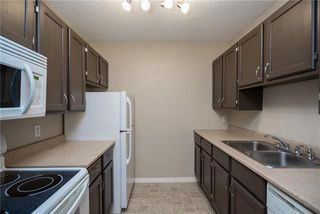 Photo 10: 206 1736 Henderson Highway in Winnipeg: North Kildonan Condominium for sale (3G)  : MLS®# 1923060