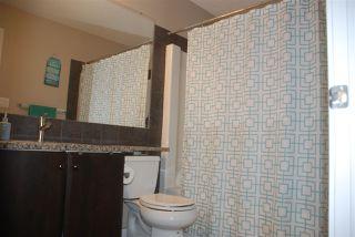 Photo 14: 7307 15A Avenue in Edmonton: Zone 53 House for sale : MLS®# E4169412