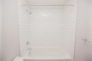 Photo 14: 16139 17 Avenue in Edmonton: Zone 56 House for sale : MLS®# E4172075