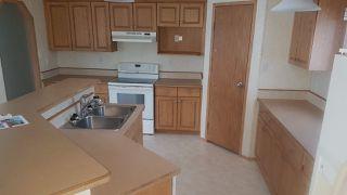Photo 4: 196, 3400 - 48 Street: Stony Plain Mobile for sale : MLS®# E4184612