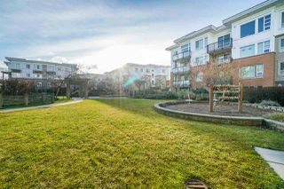 Photo 17: 230 9500 ODLIN Road in Richmond: West Cambie Condo for sale : MLS®# R2523655